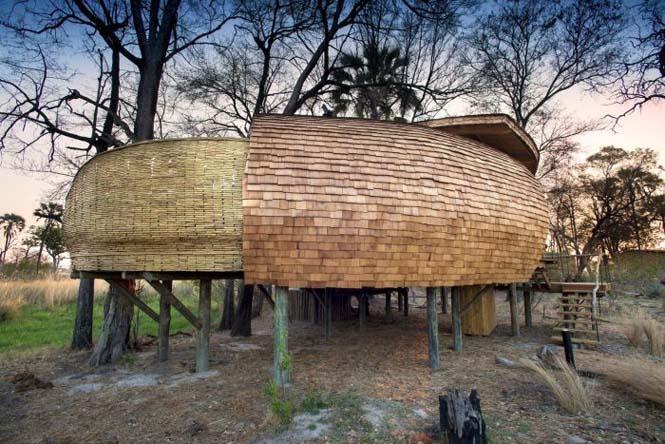 Η Μποτσουάνα διαθέτει ένα από τα κορυφαία ξενοδοχεία άγριας φύσης (28)