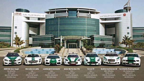 Στο Dubai μπορείς να συναντήσεις κυριολεκτικά τα πάντα... (20)