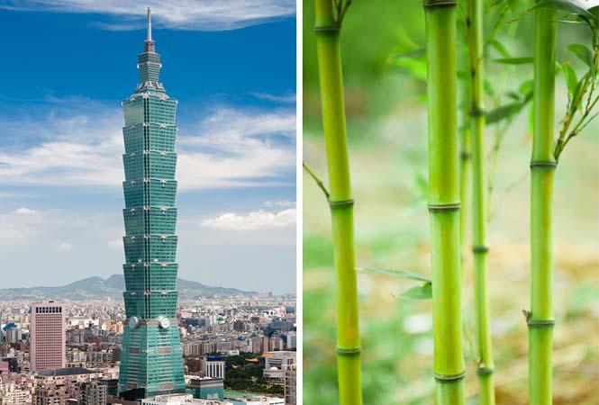10 εκπληκτικά αριστουργήματα της αρχιτεκτονικής εμπνευσμένα από την φύση (1)