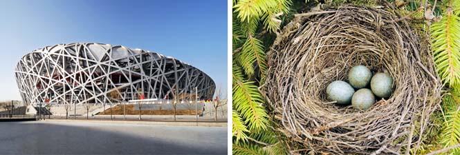 10 εκπληκτικά αριστουργήματα της αρχιτεκτονικής εμπνευσμένα από την φύση (2)