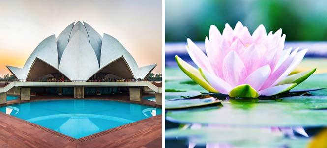10 εκπληκτικά αριστουργήματα της αρχιτεκτονικής εμπνευσμένα από την φύση (9)