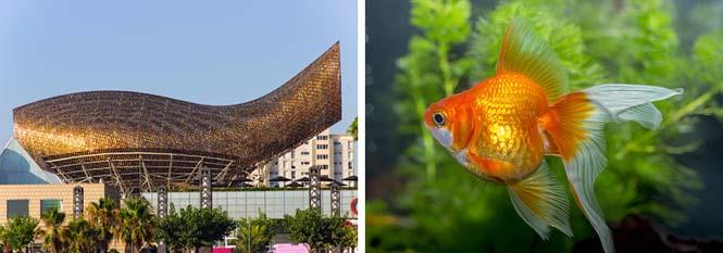 10 εκπληκτικά αριστουργήματα της αρχιτεκτονικής εμπνευσμένα από την φύση (10)