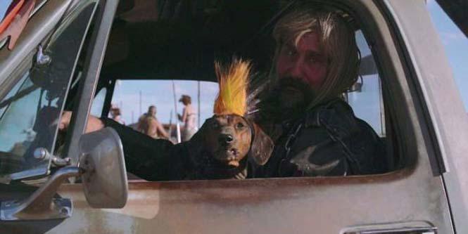 Το φεστιβάλ Wasteland Weekend σας βάζει στον κόσμο του Mad Max (11)