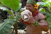 Πως να ξεφλουδίσεις μια καρύδα σύμφωνα με τον Chief Kap Te'o-Tafiti