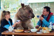 Ζευγάρι από την Ρωσία ζει με μια αρκούδα εδώ και 23 χρόνια (1)