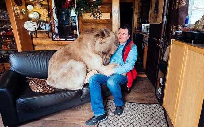 Ζευγάρι από την Ρωσία ζει με μια αρκούδα εδώ και 23 χρόνια (6)