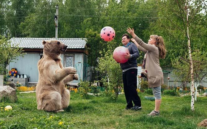 Ζευγάρι από την Ρωσία ζει με μια αρκούδα εδώ και 23 χρόνια (7)