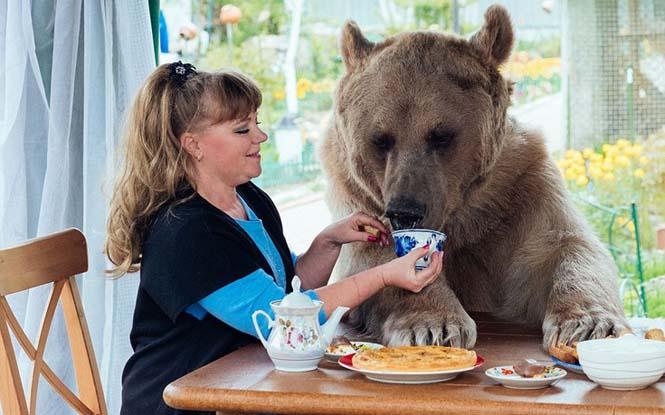Ζευγάρι από την Ρωσία ζει με μια αρκούδα εδώ και 23 χρόνια (9)