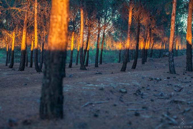 Φωτογράφος καταγράφει τις απίθανες συμπτώσεις που υπάρχουν παντού γύρω μας (3)