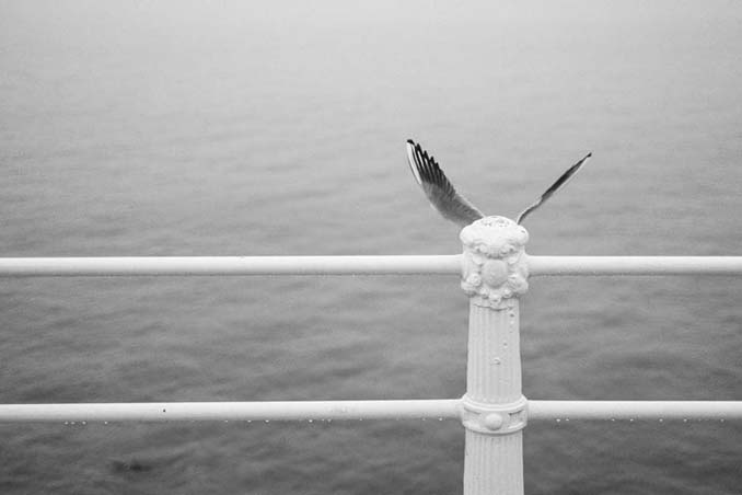 Φωτογράφος καταγράφει τις απίθανες συμπτώσεις που υπάρχουν παντού γύρω μας (17)