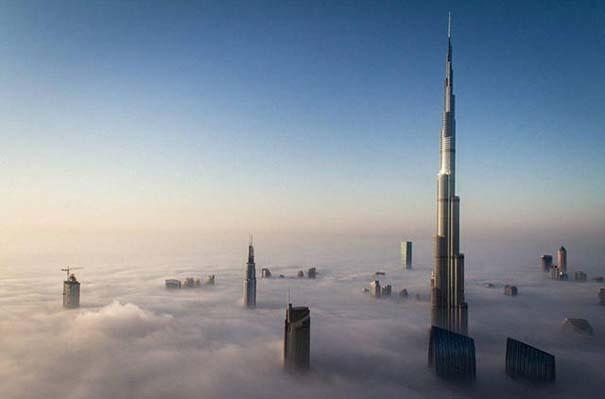 Στο Dubai μπορείς να συναντήσεις κυριολεκτικά τα πάντα... #2 (5)