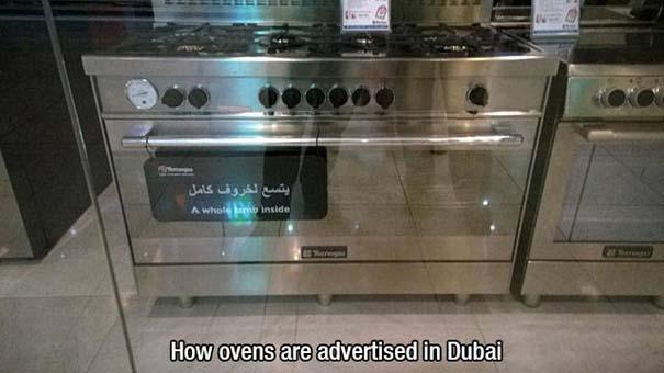 Στο Dubai μπορείς να συναντήσεις κυριολεκτικά τα πάντα... #2 (8)