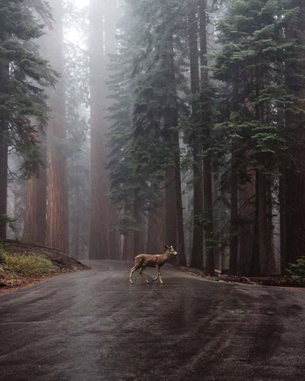 Φωτογραφίες που θα σας κάνουν να θέλετε να βγείτε στην φύση αναζητώντας περιπέτεια (12)