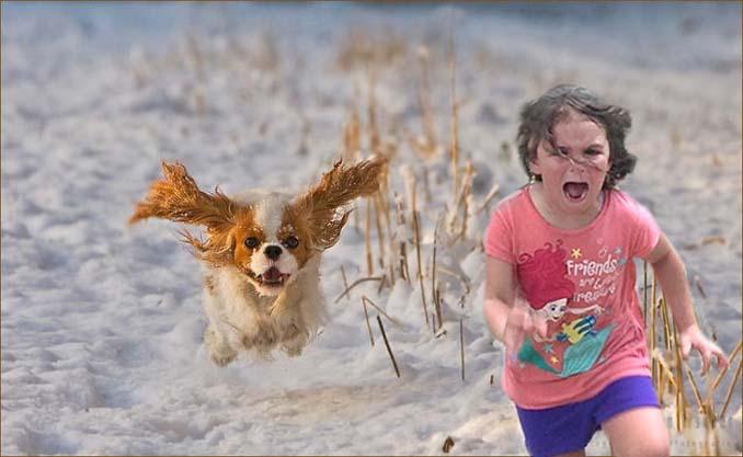 Κοριτσάκι τρέχει να γλυτώσει από παγόνι και οι ειδικοί του Photoshop αναλαμβάνουν δράση (3)