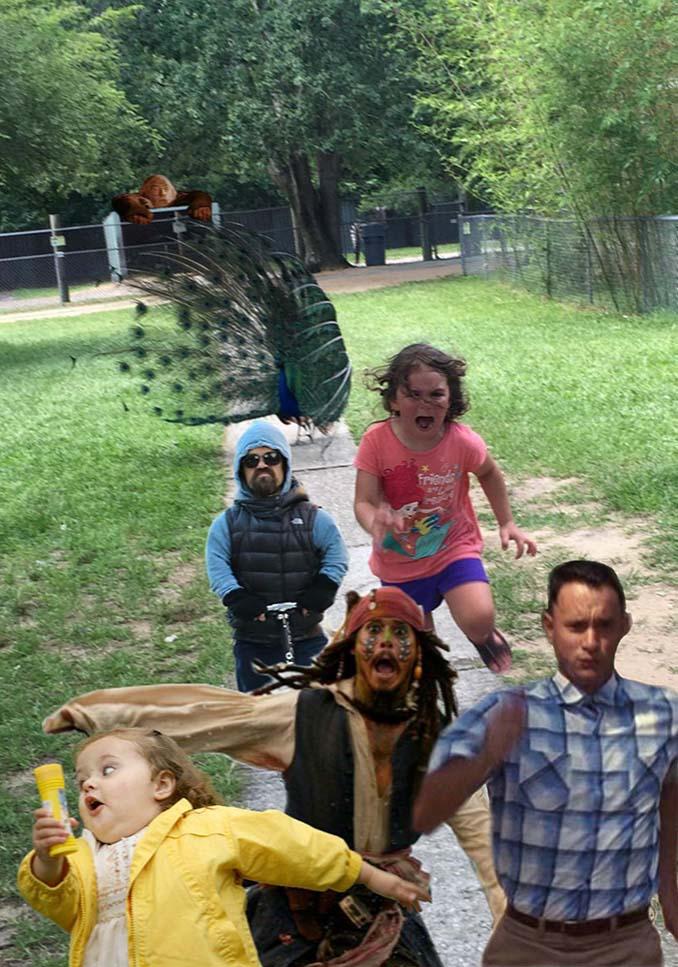 Κοριτσάκι τρέχει να γλυτώσει από παγόνι και οι ειδικοί του Photoshop αναλαμβάνουν δράση (5)