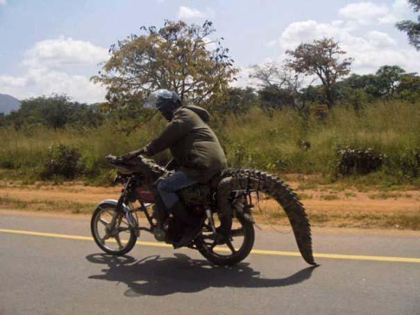 Μόνο στην Αφρική #4 (7)