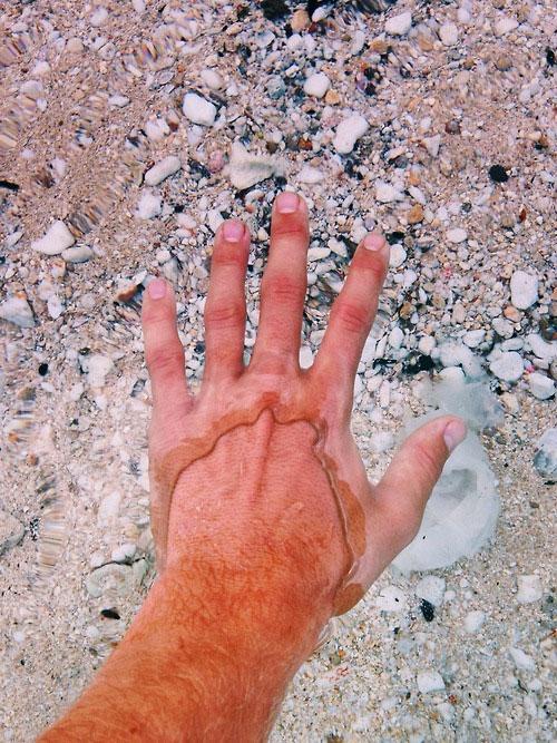 Πραγματικά κρυστάλλινα νερά | Φωτογραφία της ημέρας