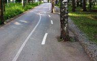 Αυτός ο ποδηλατόδρομος είναι σκέτη αποτυχία... (1)