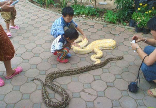 Εν τω μεταξύ, στην Ταϊλάνδη... #3 (4)