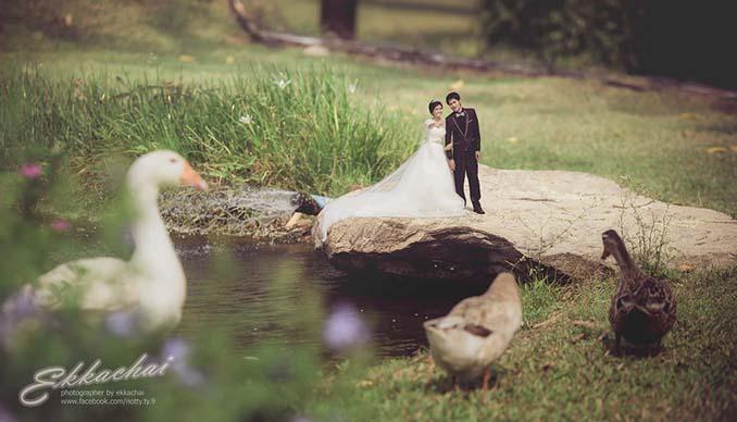 Φωτογράφος γάμων μετατρέπει τα ζευγάρια σε μινιατούρες (4)