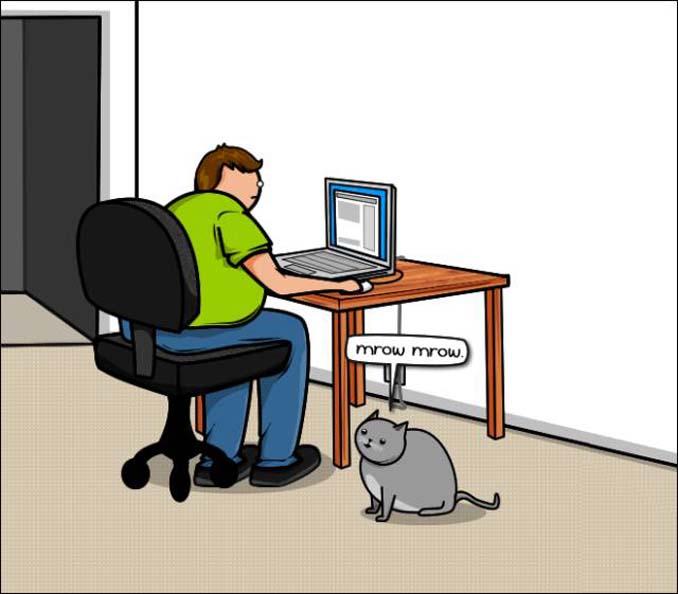 Γάτα vs Internet (3)