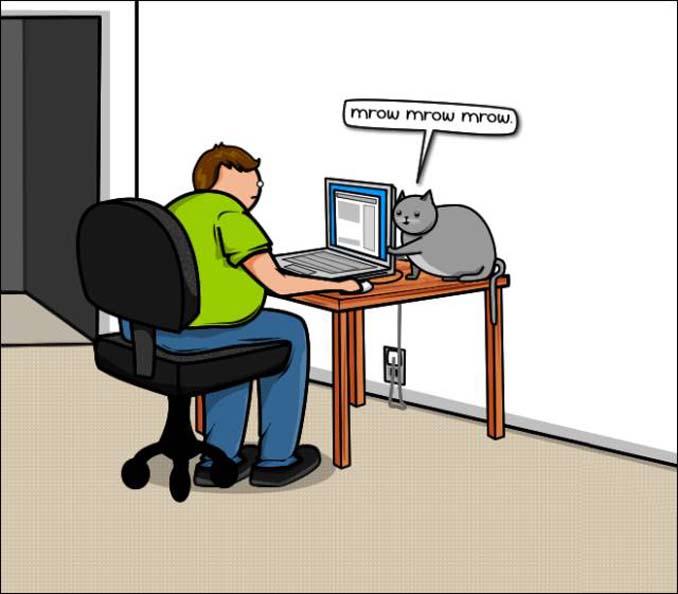 Γάτα vs Internet (4)