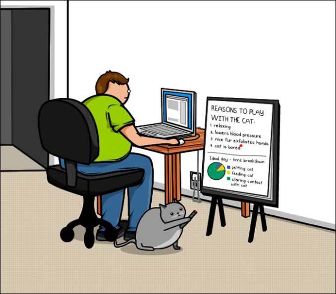 Γάτα vs Internet (9)