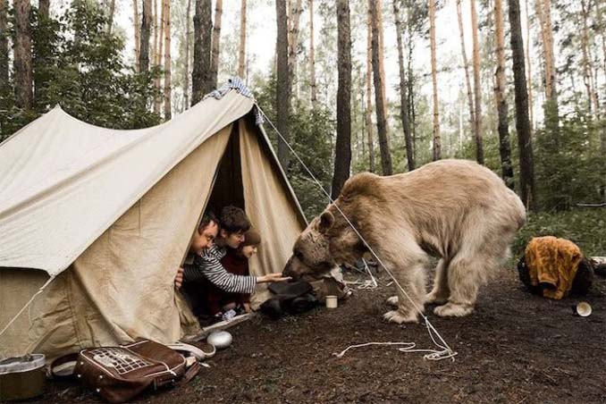 Κατοικίδια αρκούδα συμμετέχει στην οικογενειακή φωτογράφιση (2)