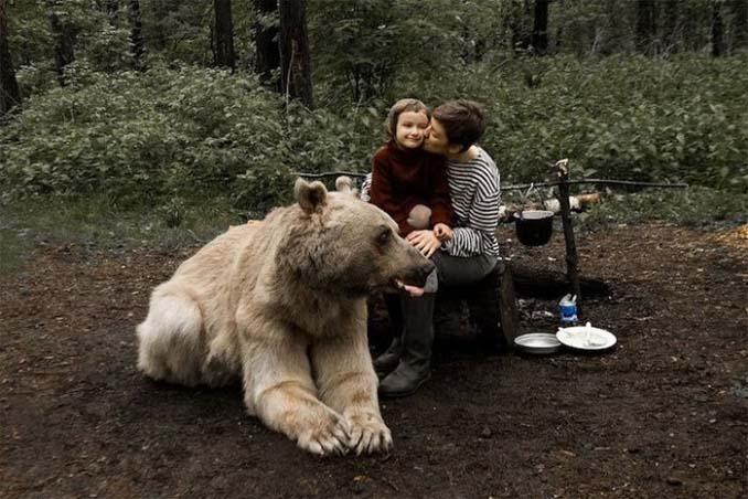 Κατοικίδια αρκούδα συμμετέχει στην οικογενειακή φωτογράφιση (8)