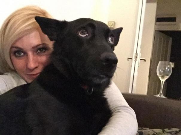 Σκύλοι που βγάζουν απίθανες selfies (1)