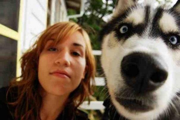 Σκύλοι που βγάζουν απίθανες selfies (10)
