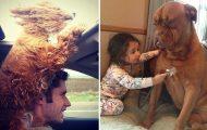 Είναι αδύνατον να μην θες έναν σκύλο βλέποντας αυτές τις φωτογραφίες