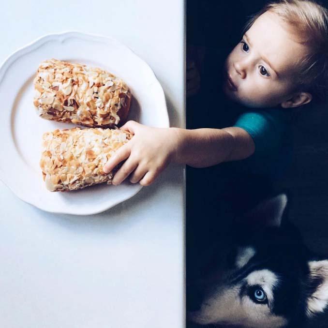 Είναι αδύνατον να μην θες έναν σκύλο βλέποντας αυτές τις φωτογραφίες (15)