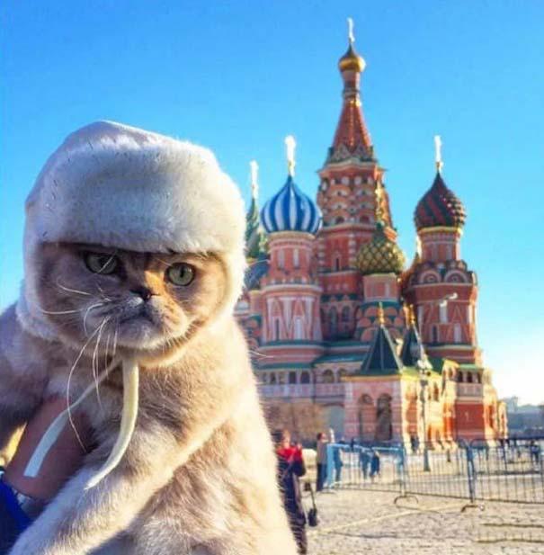 Εν τω μεταξύ, στη Ρωσία... #93 (4)