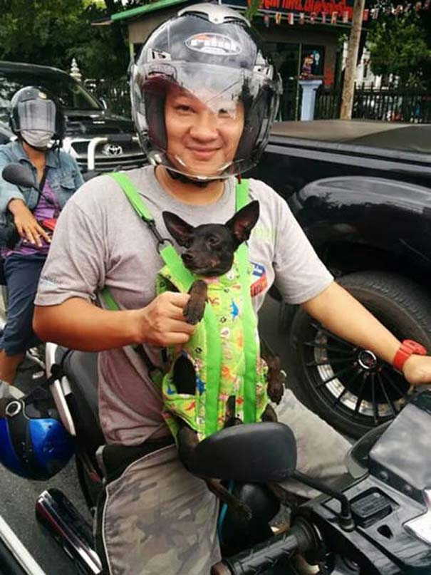 Εν τω μεταξύ, στην Ταϊλάνδη... #4 (13)