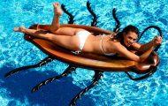 Φουσκωτή κατσαρίδα για την πισίνα (1)