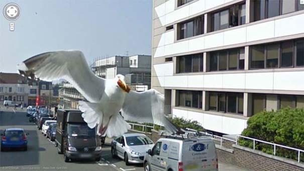 Τι κατέγραψε το Google Street View; (Photos) #18 (5)