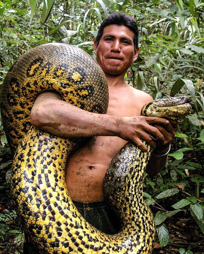 Εν τω μεταξύ, στον Αμαζόνιο του Περού... | Φωτογραφία της ημέρας