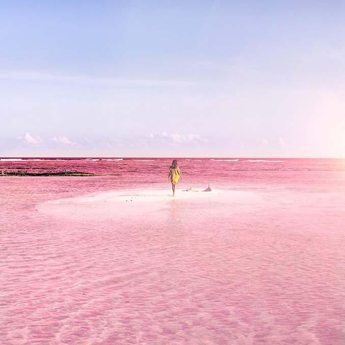 Η ροζ λιμνοθάλασσα του Μεξικού μοιάζει βγαλμένη από άλλο πλανήτη (5)