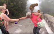10 μαϊμούδες με τις οποίες δεν θα ήθελες να μπλέξεις
