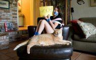 Γάτες που... κάνουν τα δικά τους! #33 (9)