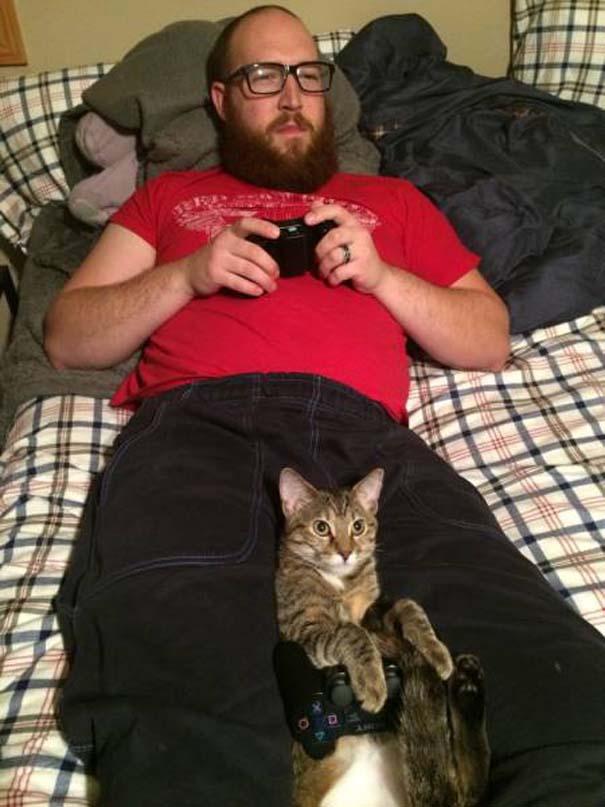 Γάτες που... κάνουν τα δικά τους! #33 (14)