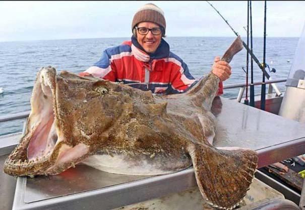 Όταν η ψαριά προκαλεί τρόμο (7)