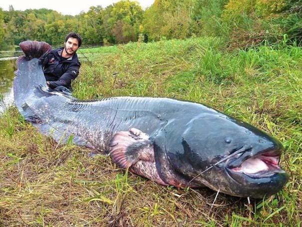 Όταν η ψαριά προκαλεί τρόμο (10)