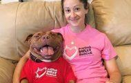 Γνωρίστε το πίτμπουλ που δεν σταματάει να χαμογελάει μετά την υιοθεσία του από καταφύγιο ζώων (1)
