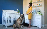 9 μήνες εγκυμοσύνης σε 90 δευτερόλεπτα