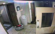 Διάσωση σκύλου πριν στραγγαλιστεί από ασανσέρ