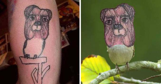 Εκκεντρικά ή αποτυχημένα τατουάζ που σε κάνουν να απορείς (11)