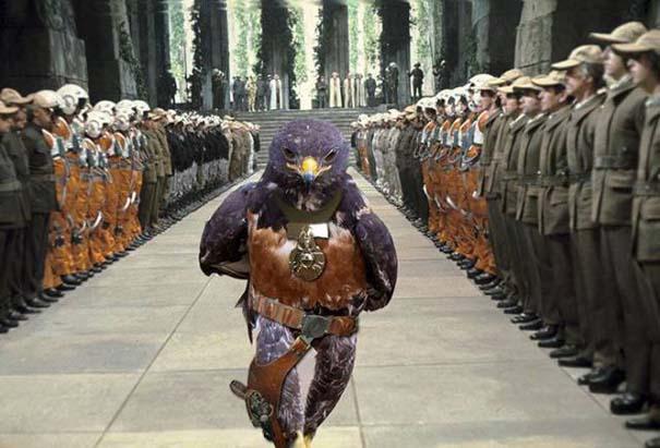 Γεράκι ξεκίνησε Photoshop battle (7)