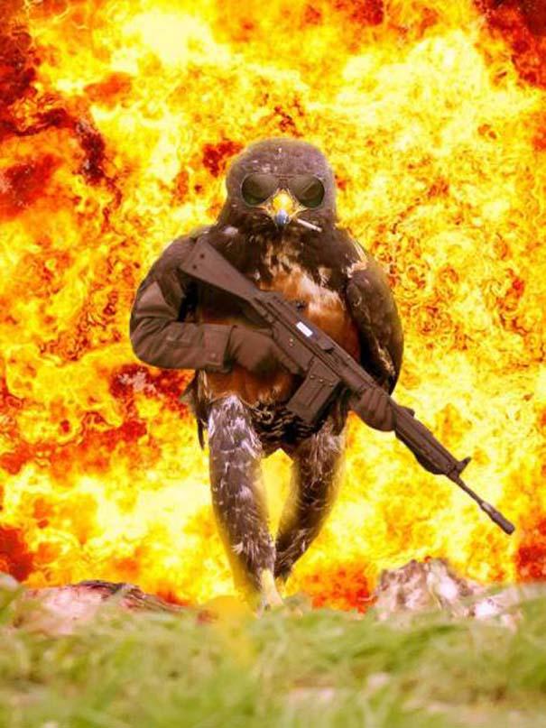 Γεράκι ξεκίνησε Photoshop battle (8)